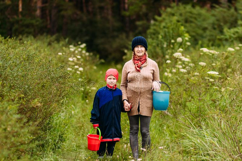 A woman of retirement age and a seven-year-old boy in the woods with buckets of mushrooms stock photography
