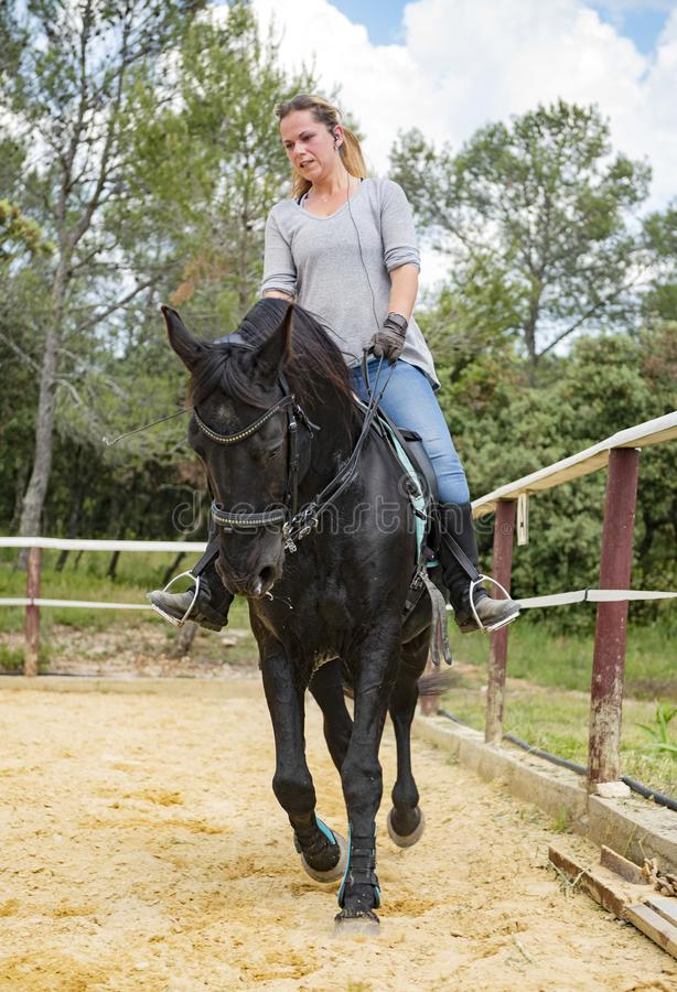 Woman rider and horse royalty free stock photo