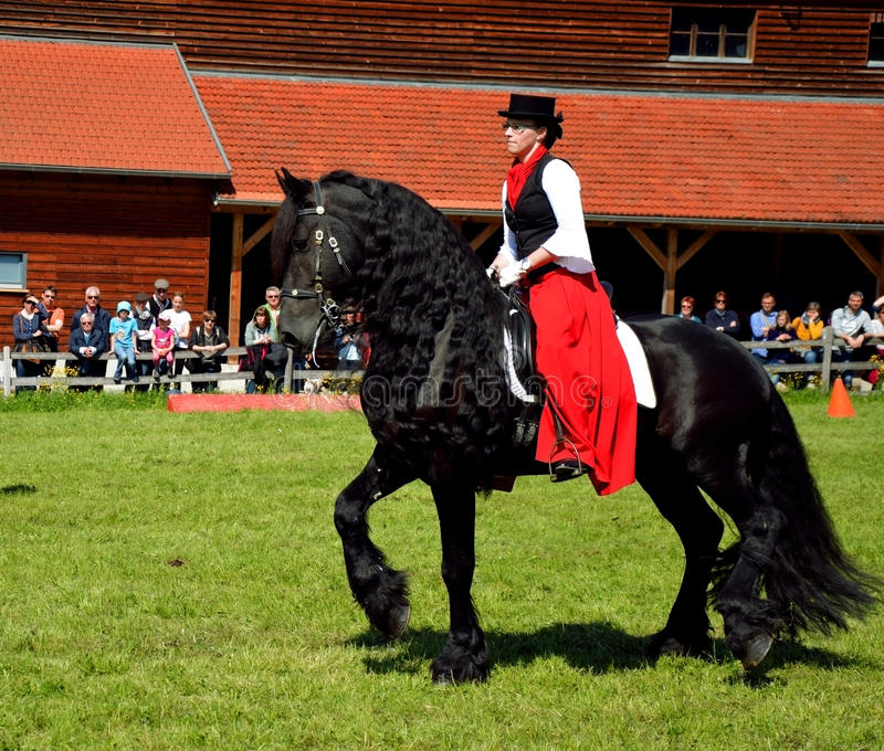 Woman riding black horse stock images