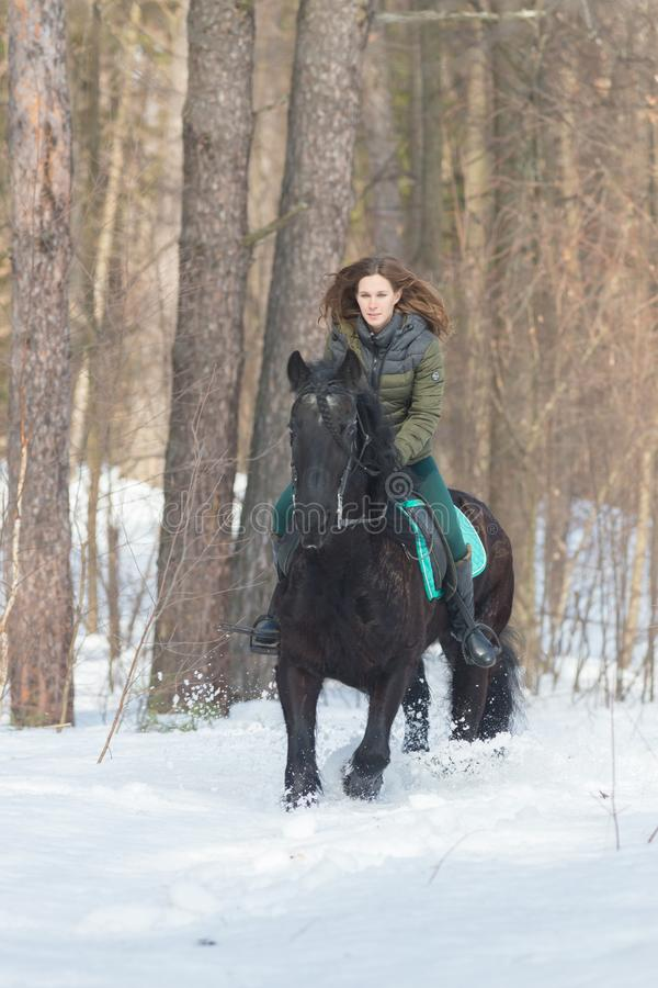 A woman riding a dark brown horse in the forest royalty free stock images