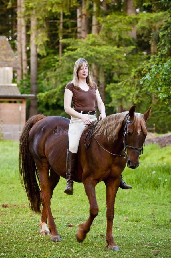 Woman riding her horse bareback stock photos