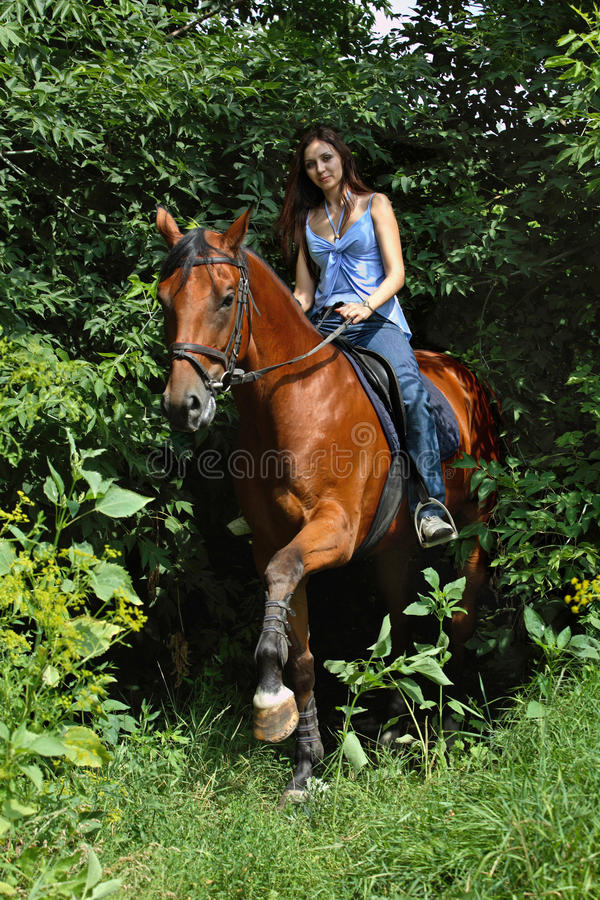 Woman riding her horse in the woods on a summer day stock images
