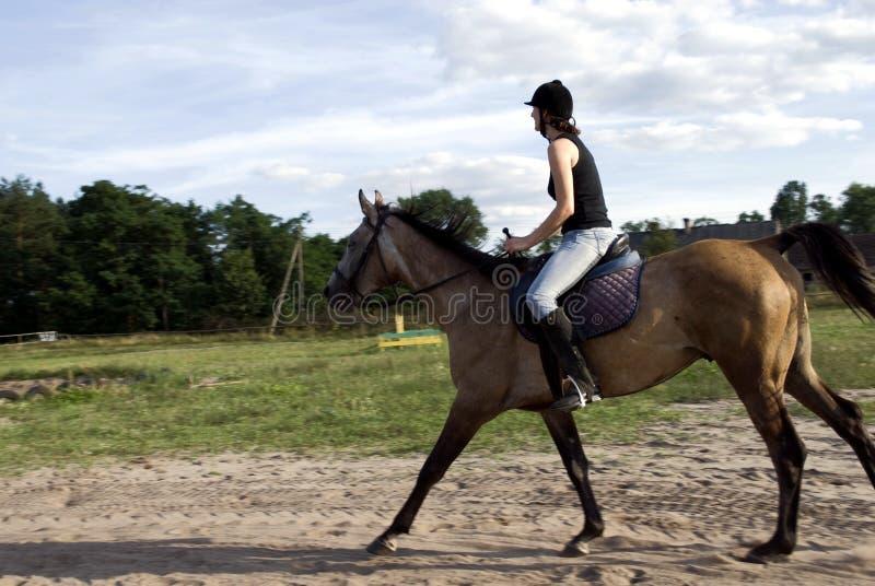 Woman riding horse royalty free stock photo
