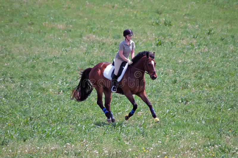 Woman riding horse. Young woman riding her horse galloping across a green meadow stock photography