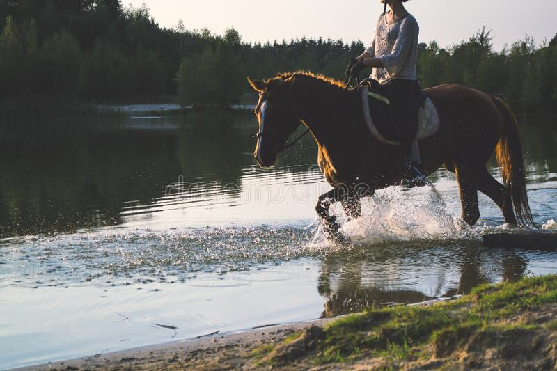 Woman Riding A Horse Free Public Domain Cc0 Image