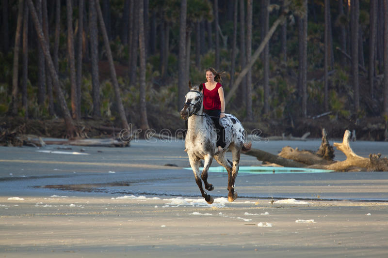 Woman Riding Horse On The Beach Royalty Free Stock Image