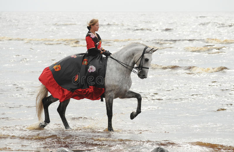 Woman riding horse in sea royalty free stock image