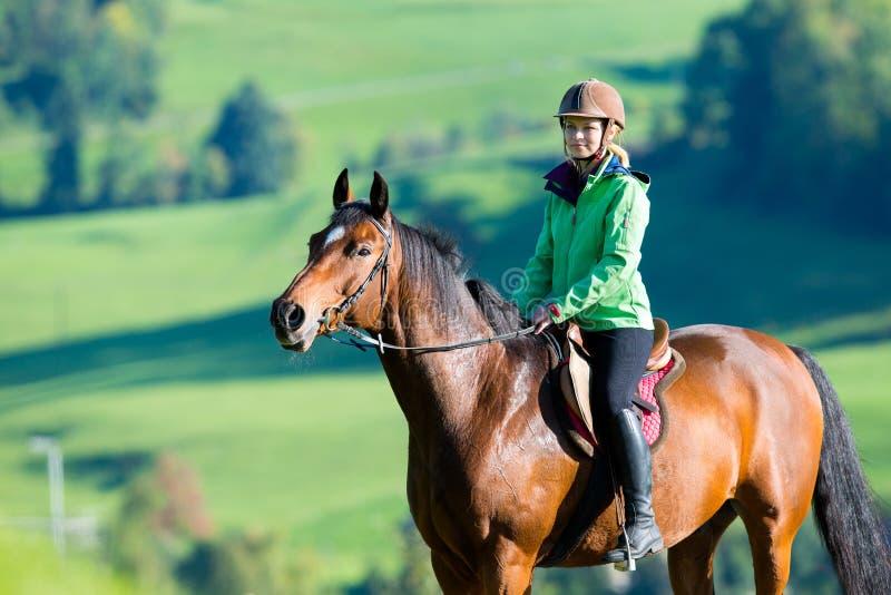 Woman riding horse. Woman riding Trakehner horse outdoor royalty free stock photography