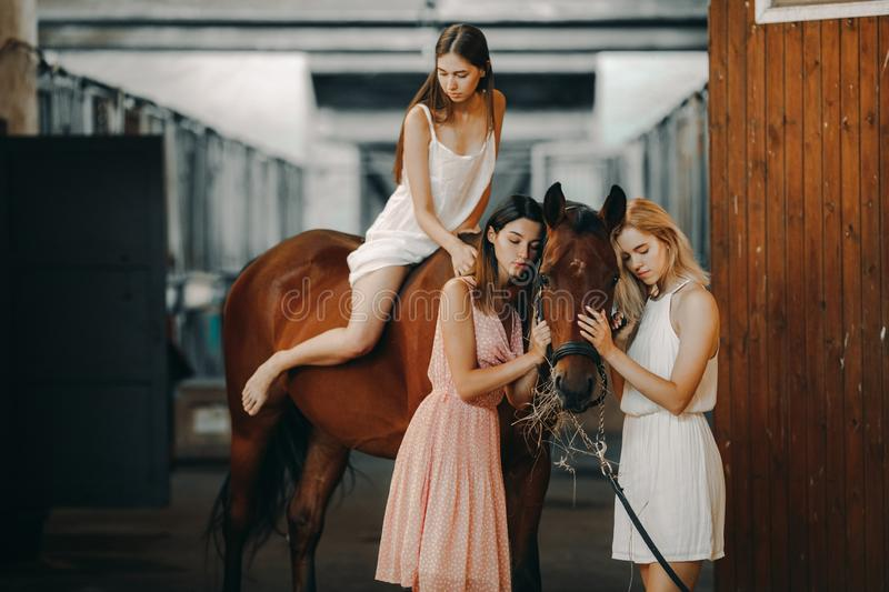 Woman is riding a horse and two other women are standing nearby. A young women is riding a horse and two other women are standing nearby in the stable royalty free stock image