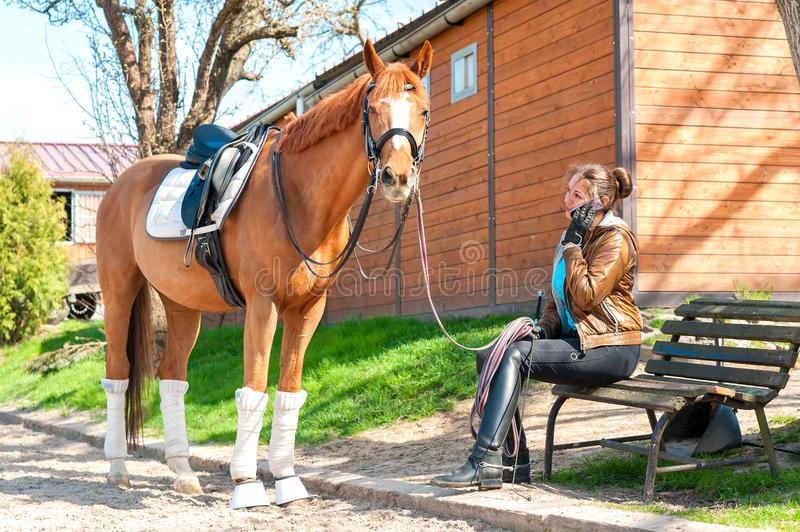 Woman riding trainer near chestnut horse speaking on cell phone stock image