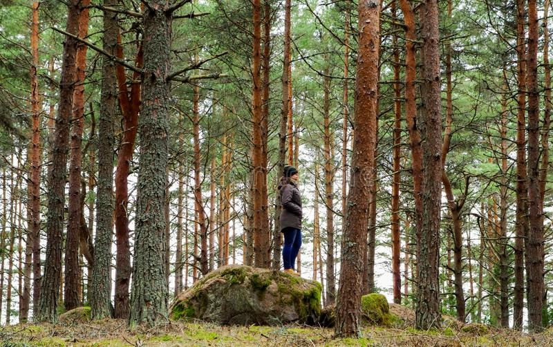 Woman on Rock Surrounded Pine Trees royalty free stock images