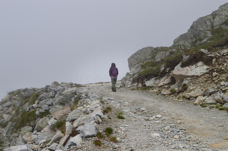 Woman on a rocky mountain road. Single woman walking on a rocky mountain road in a cold foggy day stock image
