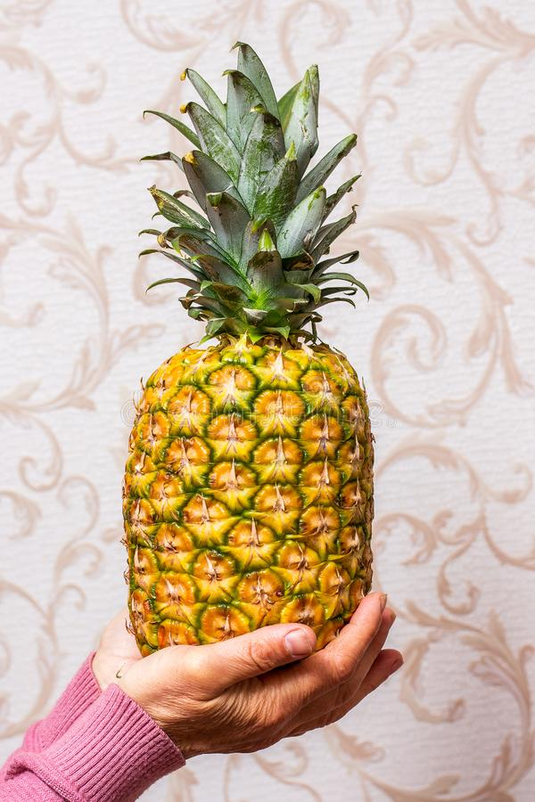 A woman in the room holds a ripe tasty pineapple in her hands_ royalty free stock photography