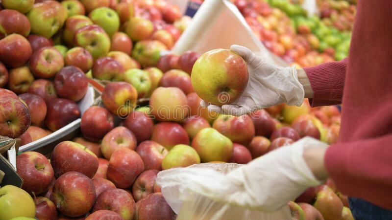 Woman in rubber gloves picks fresh apples and puts them in a plastic bag at the supermarket. Coronavirus protection. Woman in rubber gloves picks fresh apples stock photography