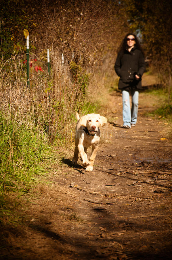 Download Woman Running With Her Dog In The Woods Stock Image - Image: 25705563