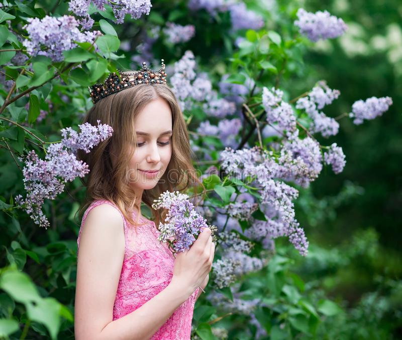 Woman, russian model in blossom spring lilac park stock images