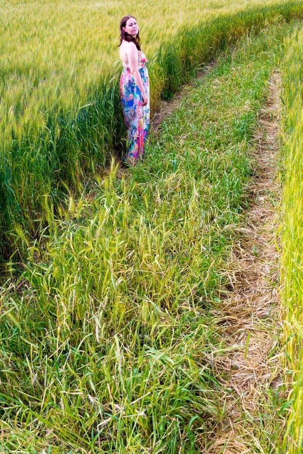 Woman in rye field. Beautiful young woman in rye grass field royalty free stock photo