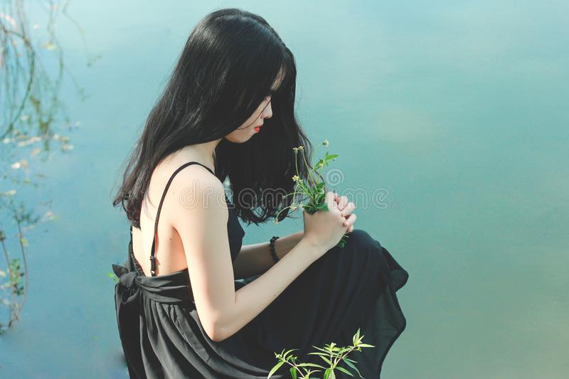 Woman's Black Dress Photo royalty free stock photo