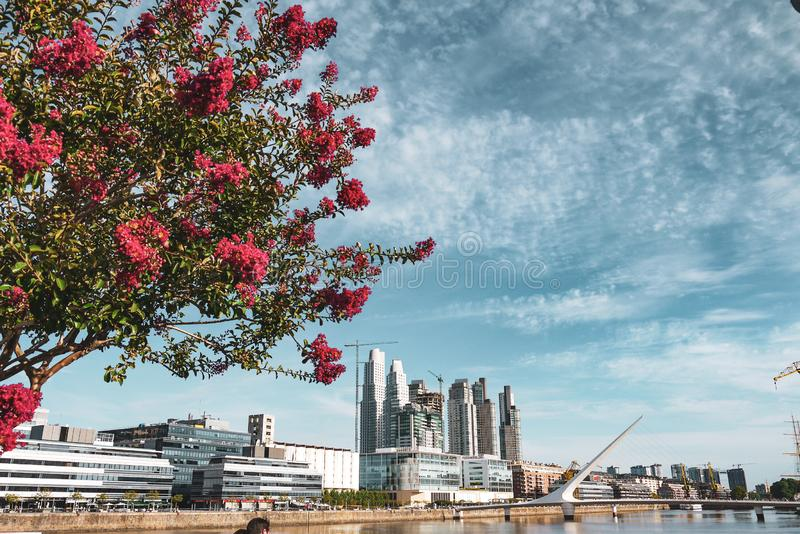 Woman`s bridge in Buenos Aires, Argentina royalty free stock images