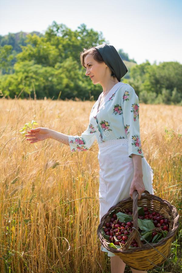 Woman in 40s clothes walks in the Italian countryside, next to a wheat field, carrying a basket of cherries royalty free stock photography