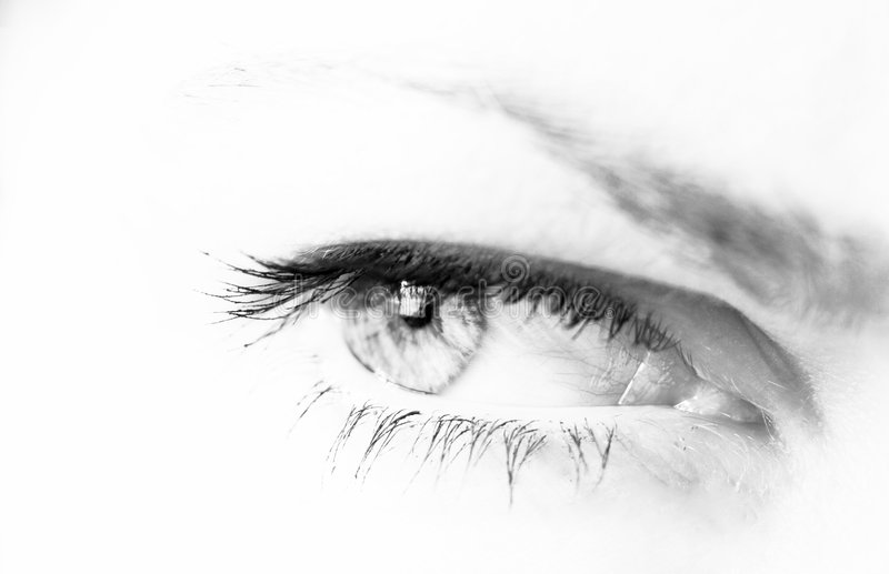 Woman's eye in b/w stock image