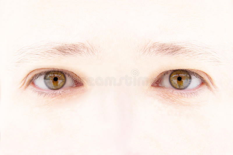 Woman's eyes royalty free stock photos