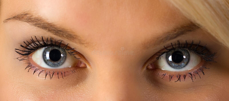 Woman's eyes royalty free stock photo
