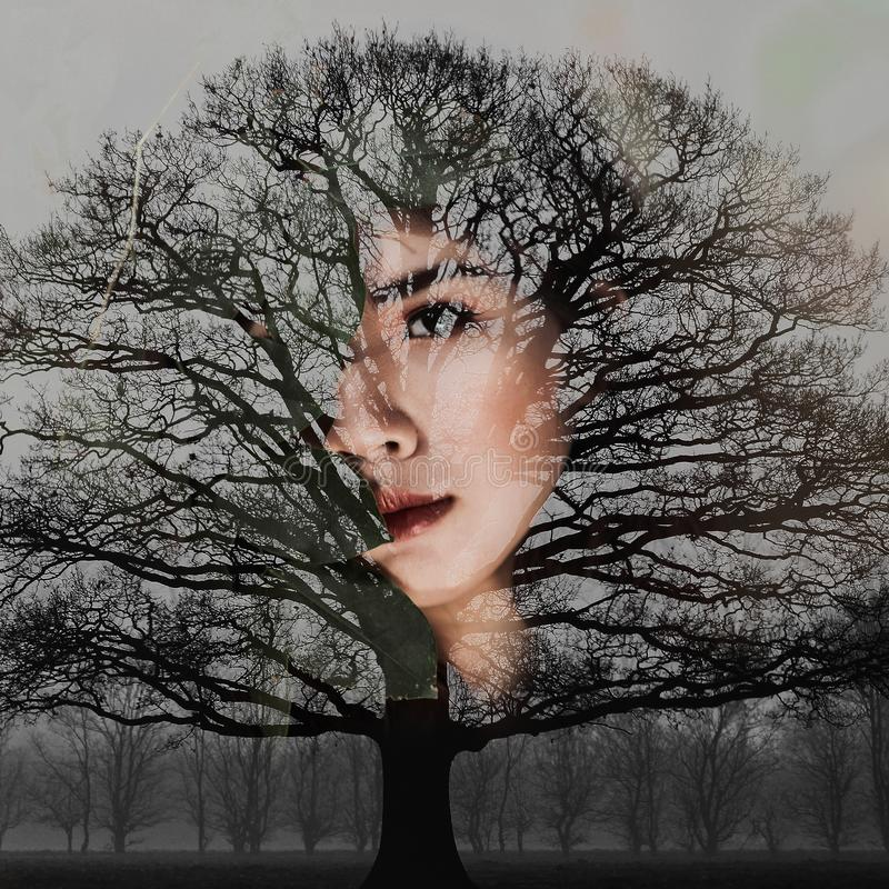 Woman's Face With Bare Tree Artwork royalty free stock photography