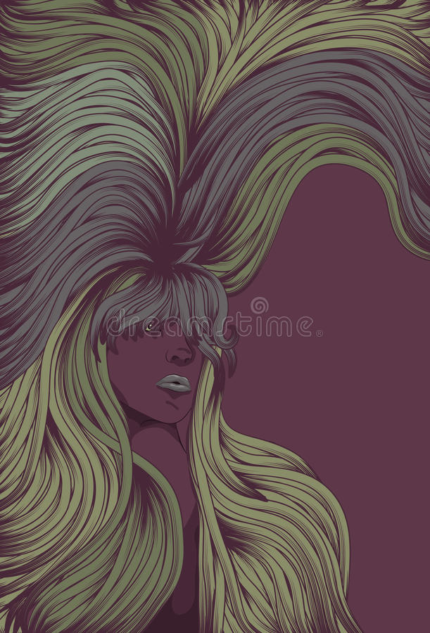 Download Woman's Face With Long Detailed Flowing Hair Stock Vector - Image: 13919350