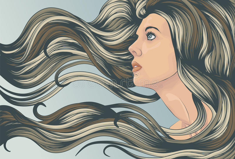 Woman's face with long detailed flowing hair stock illustration