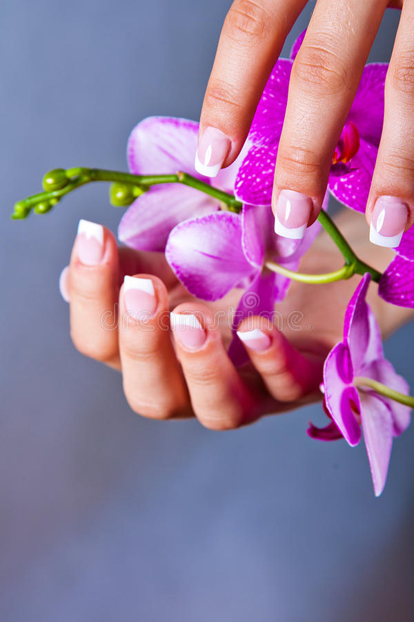 Woman's french manicure and pedicure stock photo