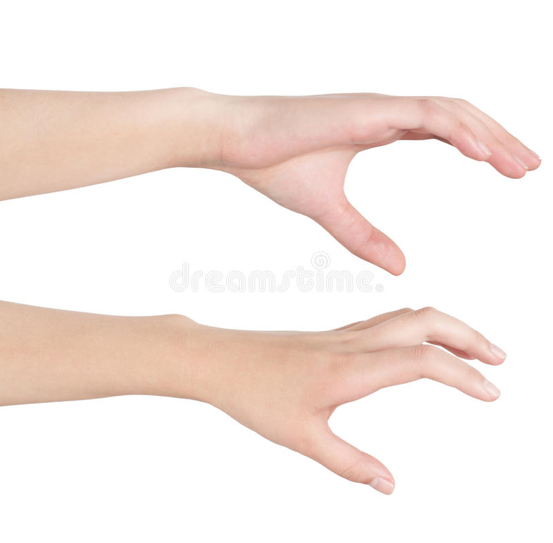 Download Woman's hand stock image. Image of gesture, showing, young - 29024137