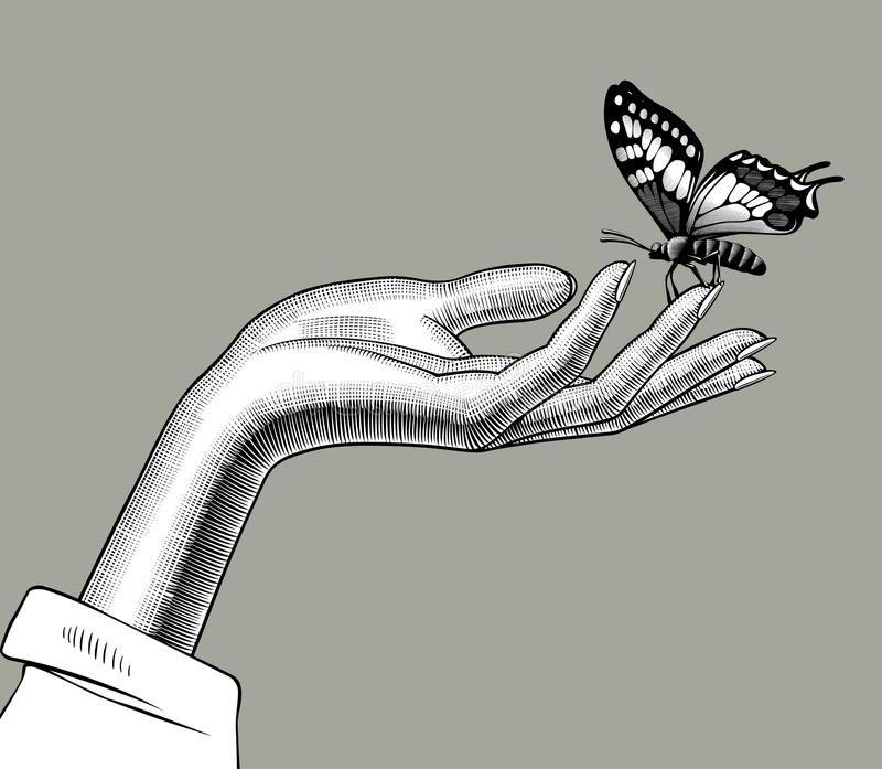 Woman`s hand with a butterfly sitting on her fingers stock illustration