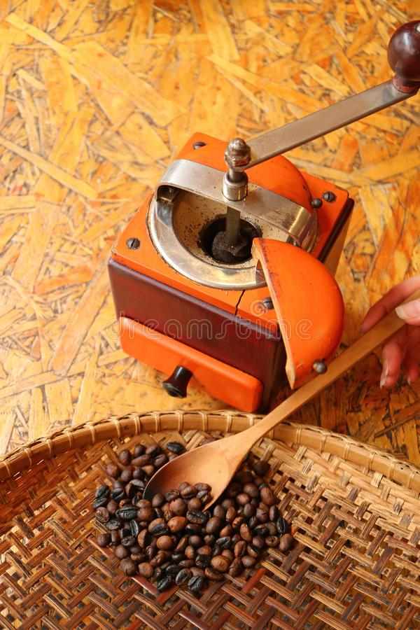 Woman`s hand cupping roasted coffee beans with wooden spoon from threshing basket to grinder for homemade coffee stock photo