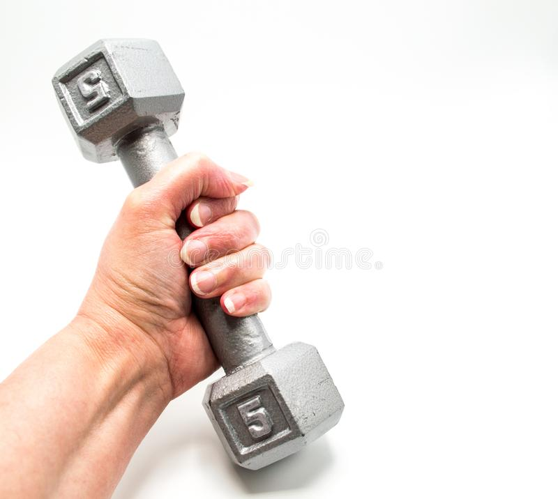 Woman`s hand holding a free weight dumbbell isolated on white stock photos