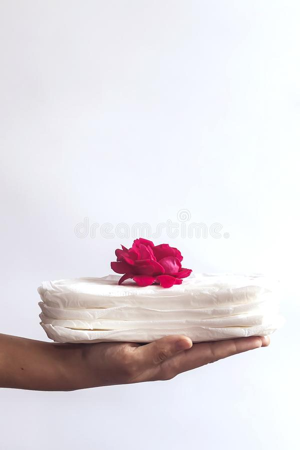 Woman`s hand holding a stack of sanitary napkins with red rose on. Against white background. Period days concept showing feminine stock image