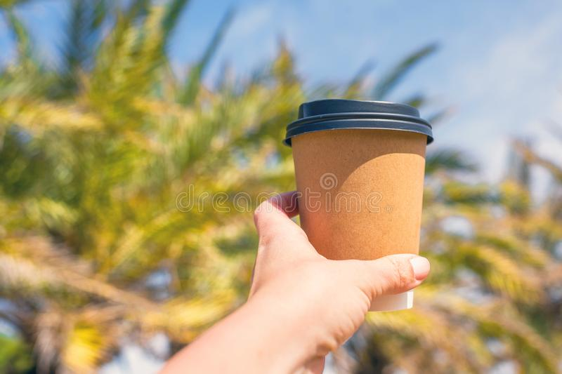 Woman`s hand with paper cup of coffee on the palm trees background. royalty free stock photography