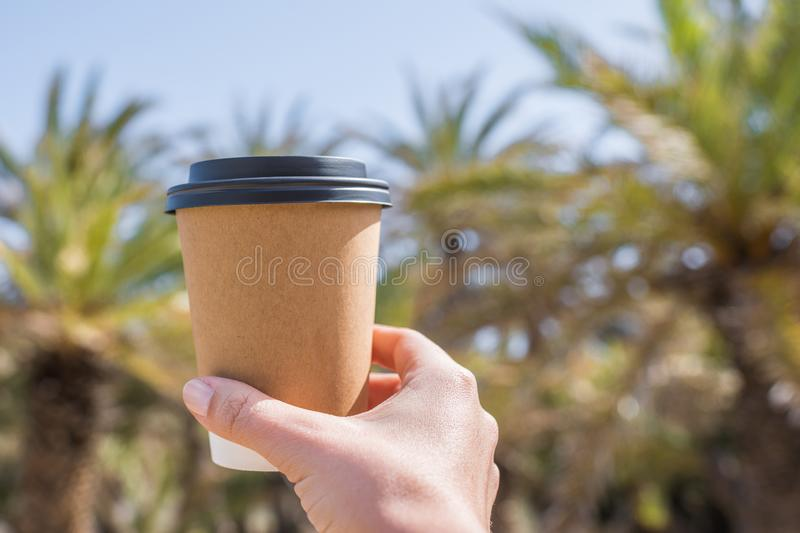 Woman`s hand with paper cup of coffee on the palm trees background. royalty free stock photo