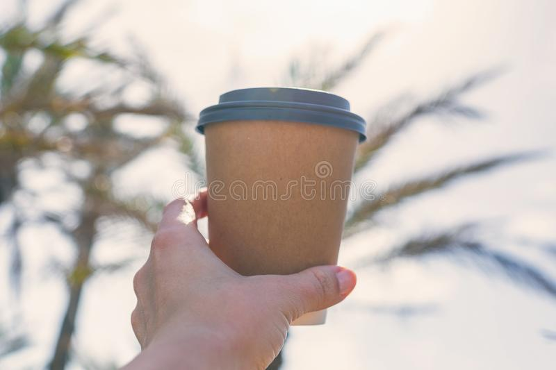 Woman`s hand with paper cup of coffee on the palm trees background. stock photo