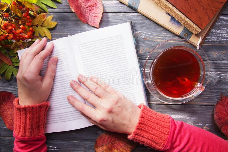 Woman`s hand. Woman reading a book. Above gray wooden table stock photo