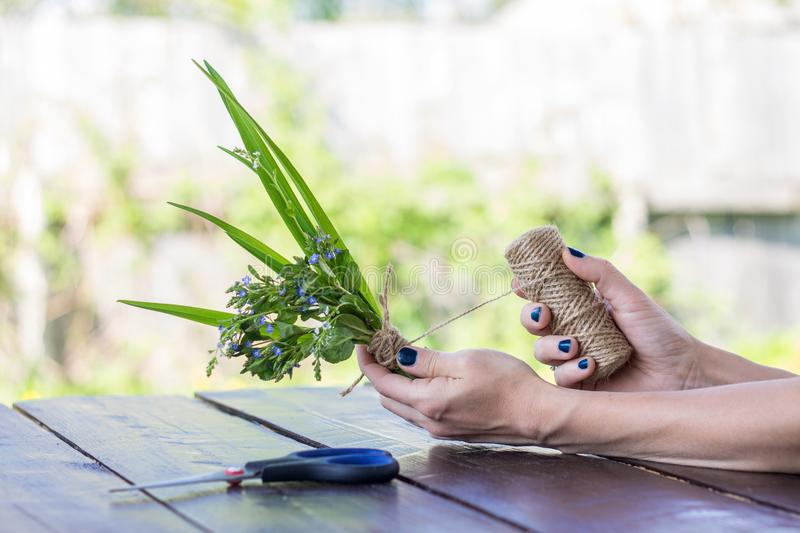 Woman`s hands holding wild field flowers, making a bouquet with royalty free stock photos