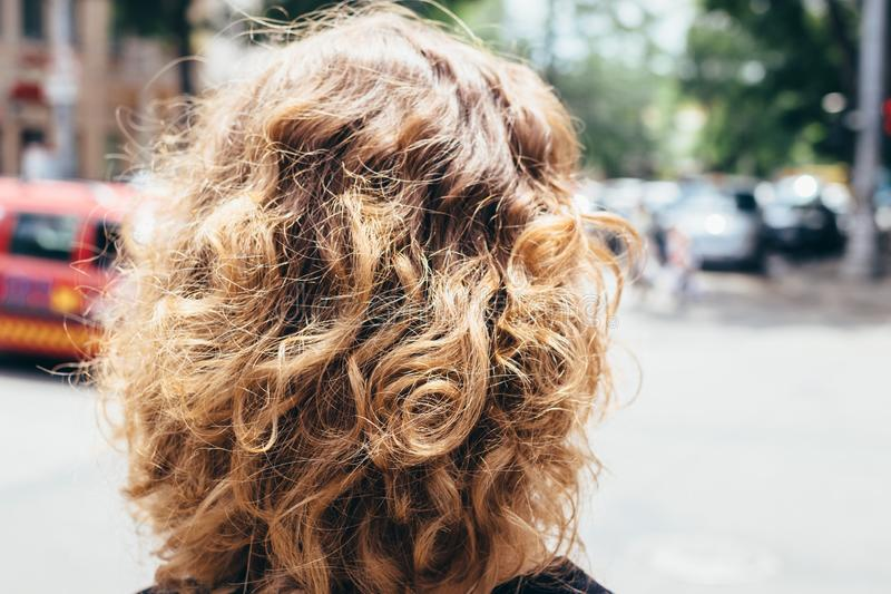 Woman`s head with fluffy curly brown hair royalty free stock image
