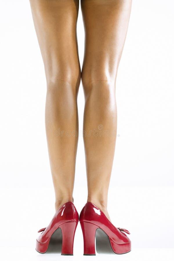Woman's legs. stock photos