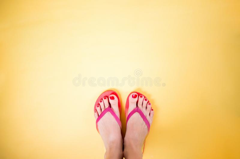Woman`s legs wearing pink flip flops on yellow background with copy space. Woman`s legs with red pedicure wearing pink flip flops on yellow background with copy stock image