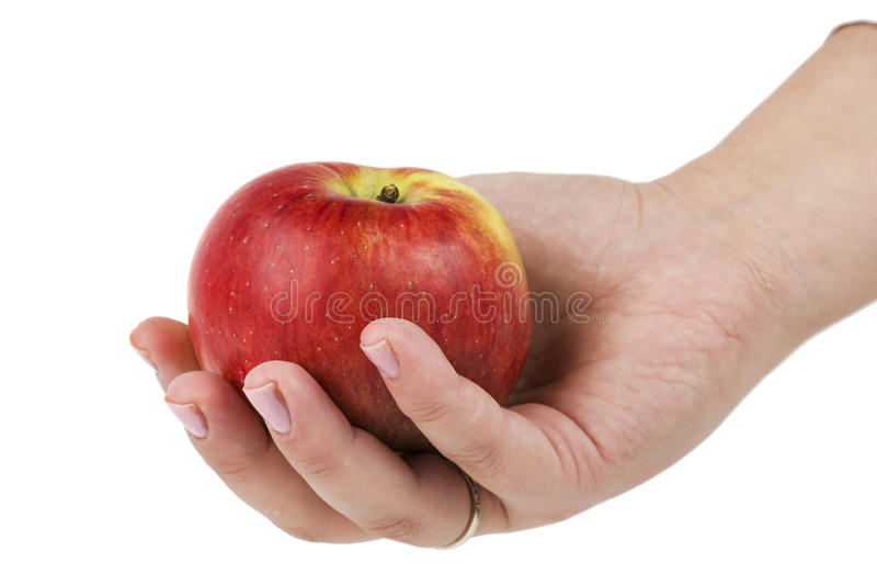Woman& x27; s ręki mienia czerwieni jabłko pojedynczy białe tło zdjęcie royalty free