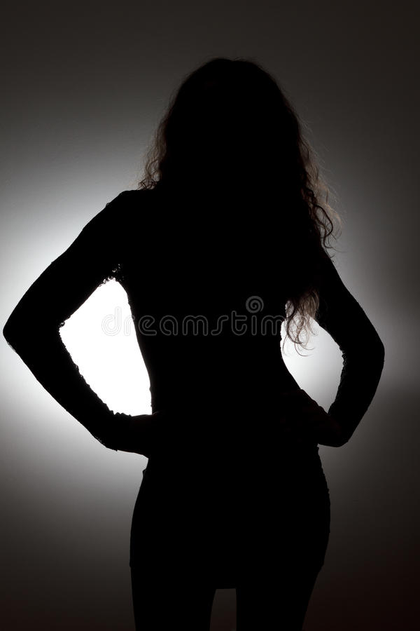 Download Woman's silhouette stock illustration. Image of beautiful - 22951684