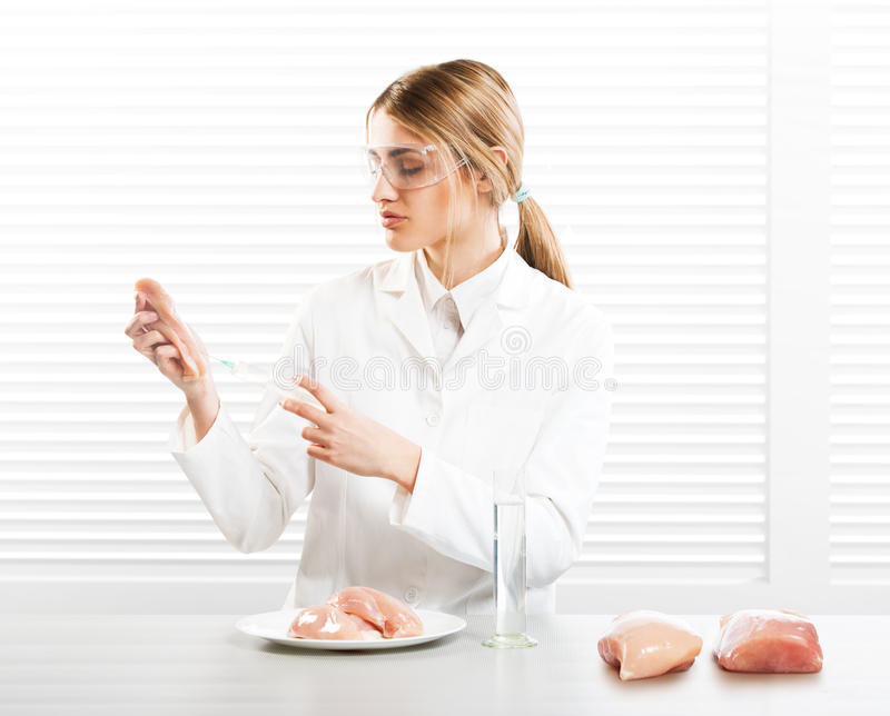 Woman scientist injecting meat with synthetic substances. GM food stock image