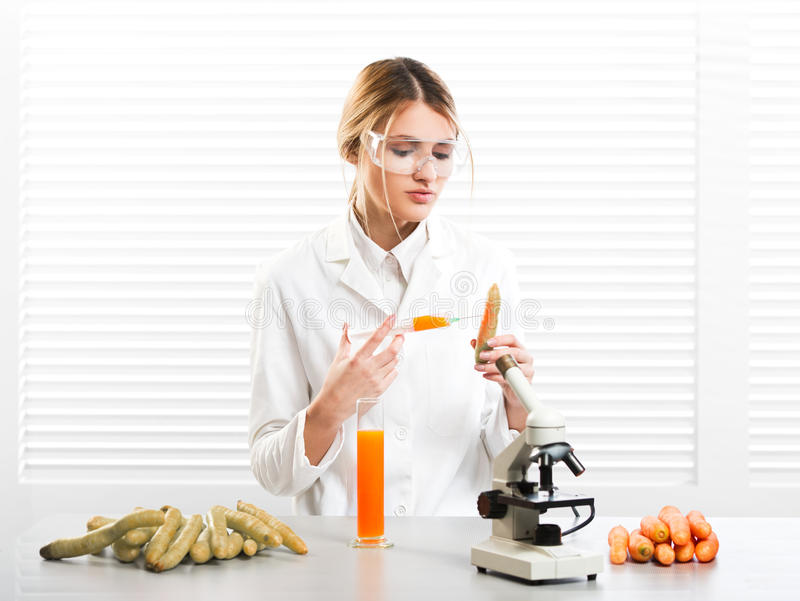 Woman scientist injecting vegetables with synthetic substances, color, vitamin. Etc; GM food royalty free stock photography