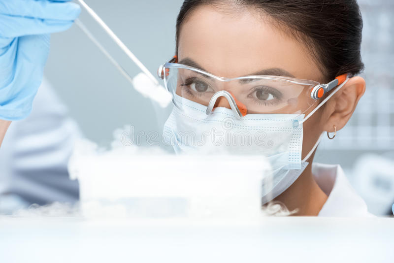 Woman scientist in protective goggles and mask making experiment in laboratory. Young woman scientist in protective goggles and mask making experiment in stock image