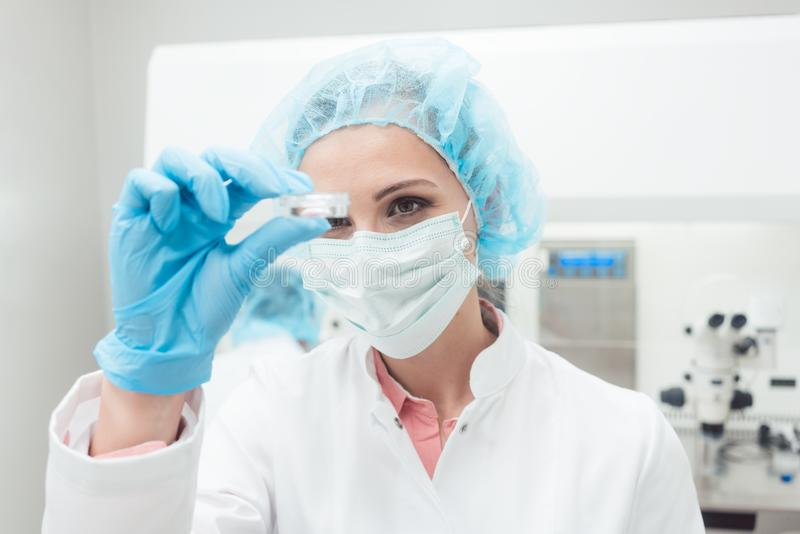 Woman scientist showing her newest biotech experiment in lab. Petri dish stock photo